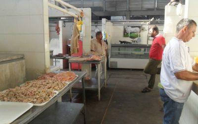 Carne que consumen los araucanos no es de óptima calidad, según Comité Regional de la Cadena Cárnica Bovina