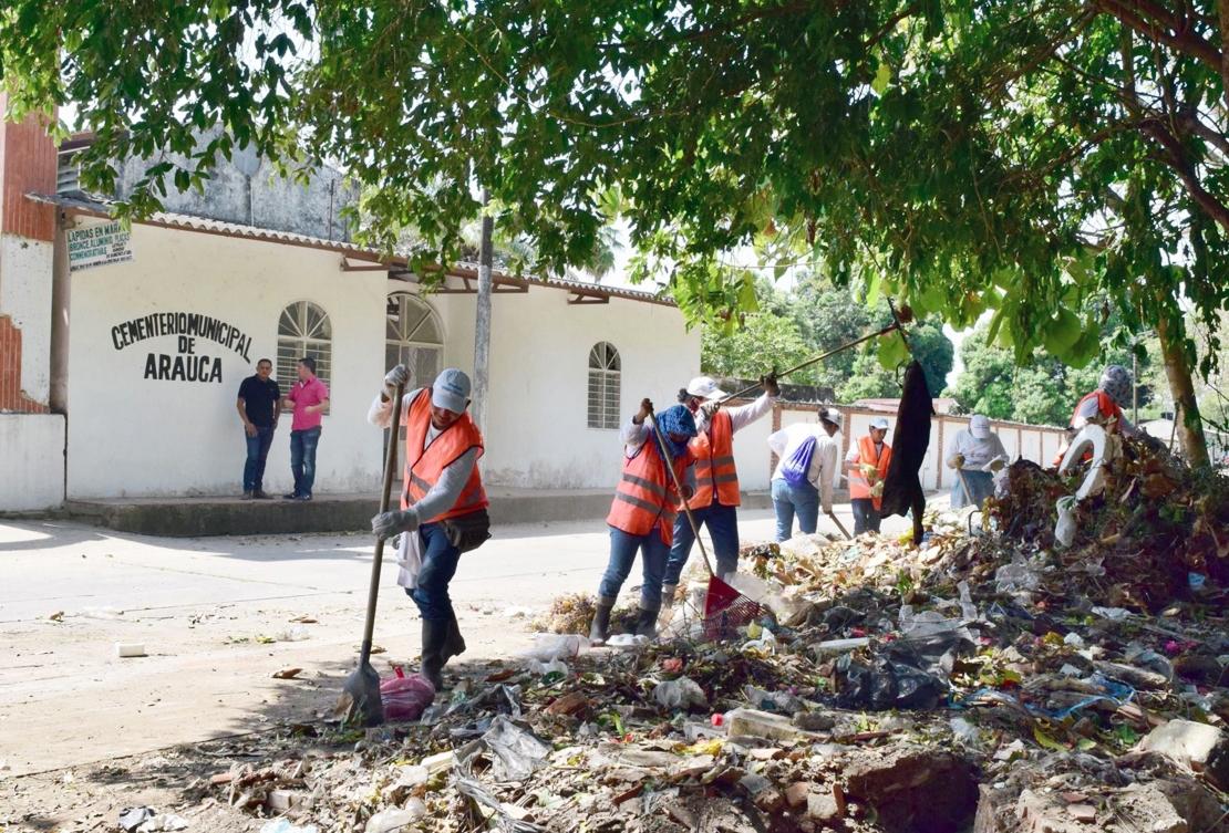 Abejas africanas atacaron a brigada que hacía limpieza en el Cementerio municipal