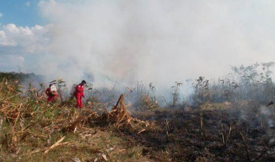 IDEAM emite alerta para Arauca ante posible incremento de incendios forestales