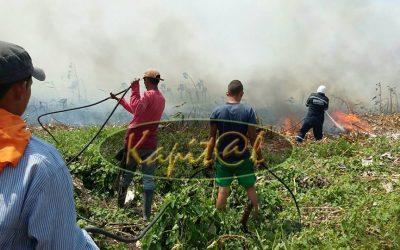Con apoyo logístico de la Gobernación y Gestión del Riesgo cuerpos de  socorro tratan de extinguir incendio en zona rural de Arauquita.