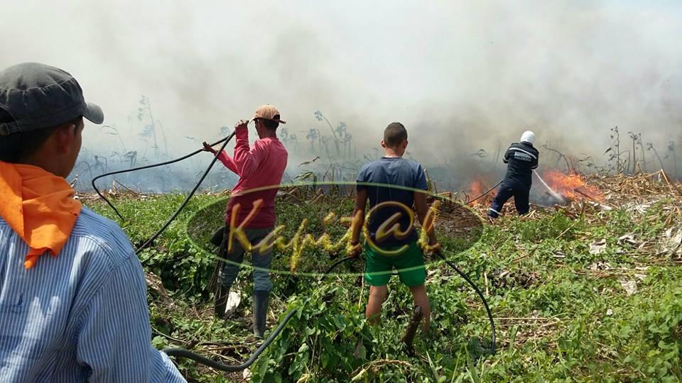 Sin controlar sigue incendio forestal de grandes proporciones que se originó en la vereda Santana de Araquita.