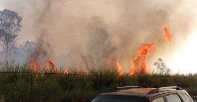 Municipio de Fortul recibió apoyo de Corporinoquia para combatir incendios forestales