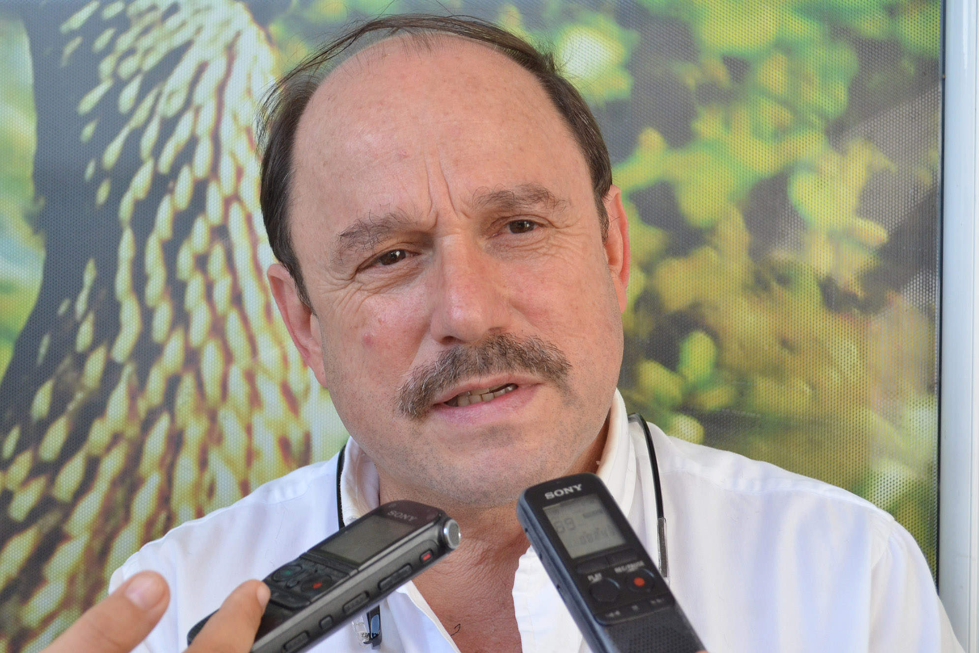 Gobernador de Arauca apoya proceso de paz con el ELN