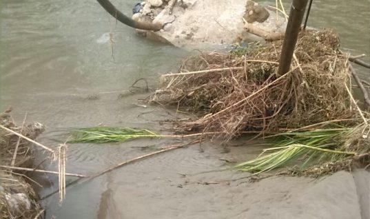 Se cayó el puente hamaca de la vereda Alto Bello de Fortul