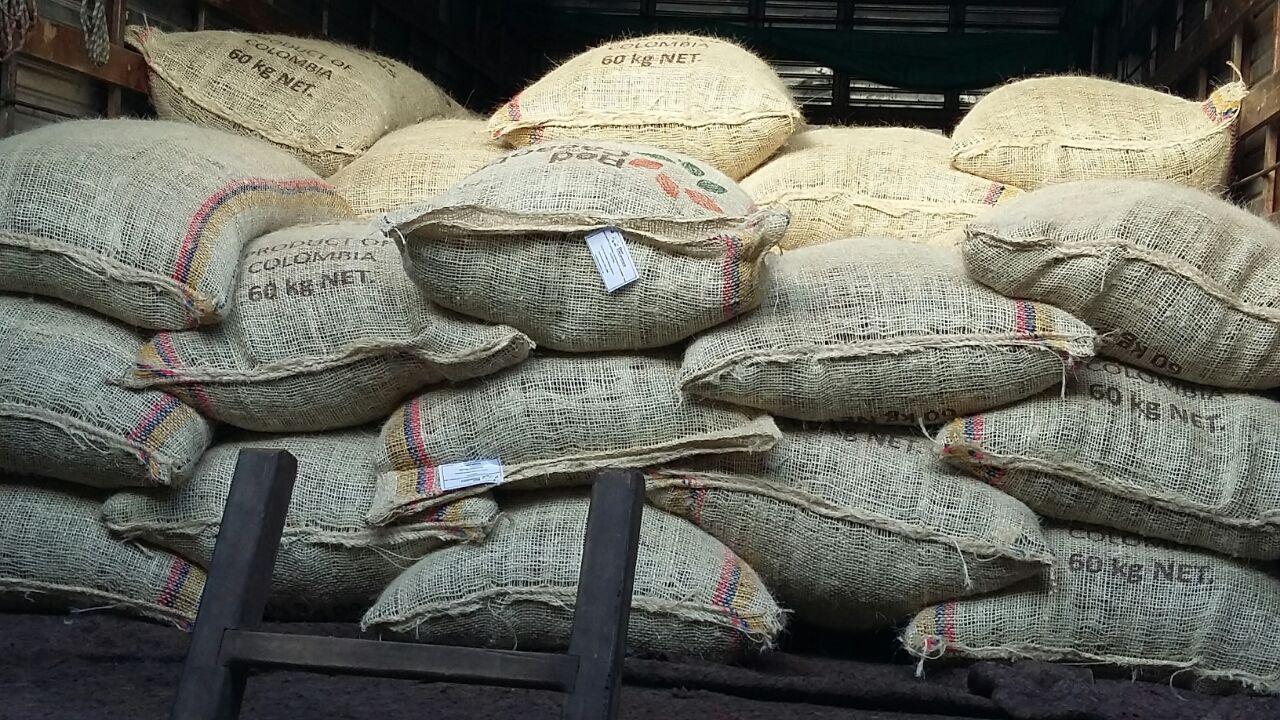 Cacao de Arauquita quiere abrirse mercado en Estados Unidos