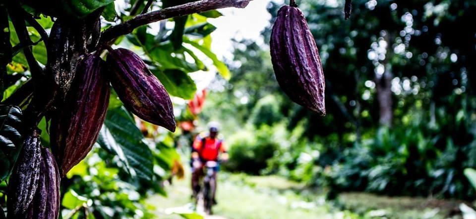 El departamento de Arauca tendrá al menos tres grandes productos para el turismo de la región