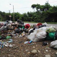 Pululan las aves de carroña en Bello Horizonte y San Vicente. Montañas de  basura no han sido recogidas por EMSERPA.