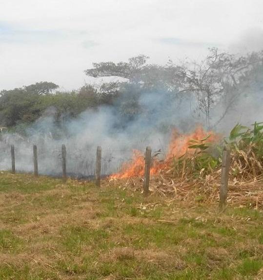 No paran los incendios en inmediaciones al cementerio de Arauca. Ya consumió cinco hectáreas. Piden a Policía capturar a pirómanos.