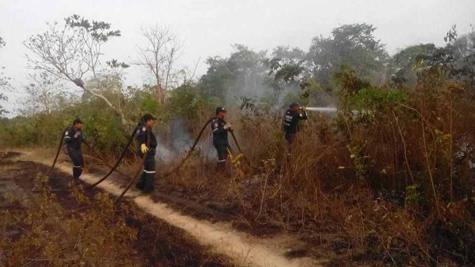 Desbordados los incendios forestales en Arauca