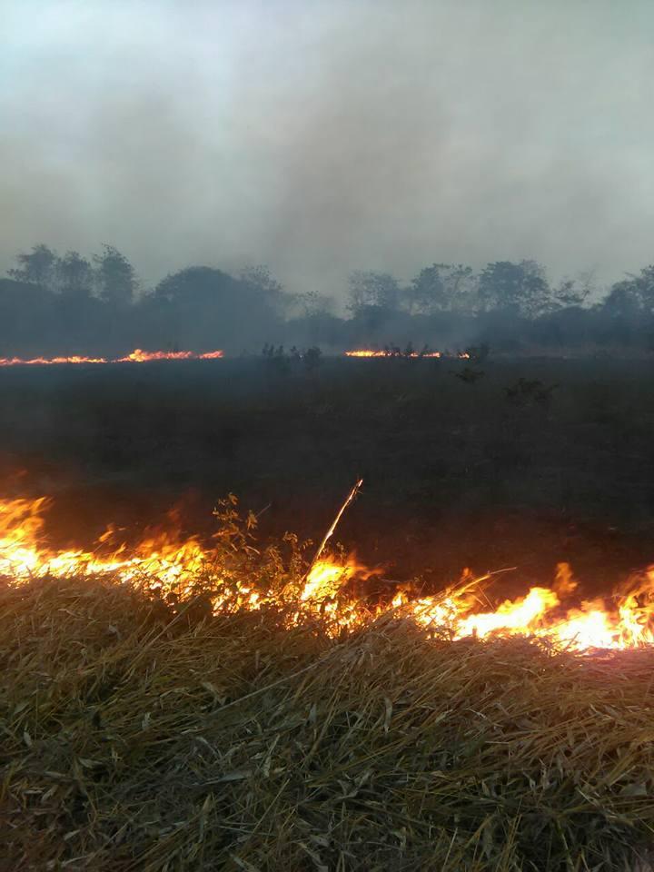Si hay acciones policiales contra responsables de quemas en el Municipio. Van  seis capturas, dijo la Policía Ambiental.