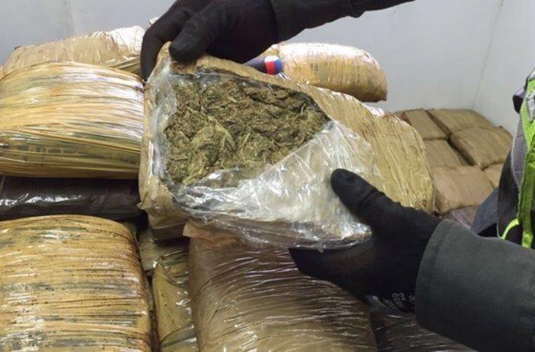 105 kilos de marihuana incautada en Tame
