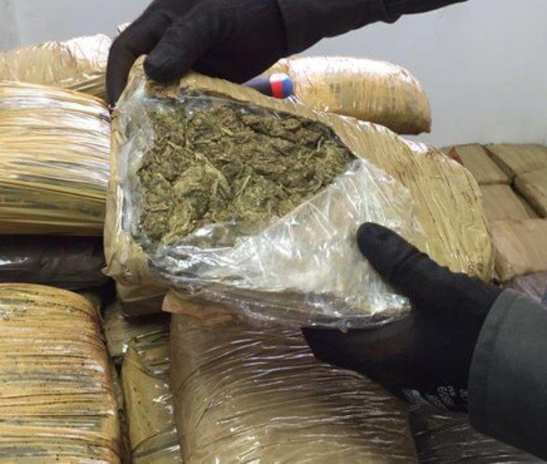 En zona rural de Tame fueron incautados 1.775 kilos de marihuana tipo cripi. Cargamento pertenecía a las disidencias de las FARC.