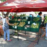 Mercados campesinos una oportunidad de comercialización directamente entre el productor y el consumidor