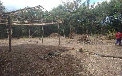 Indígenas invasores destruyen reserva forestal en Tame