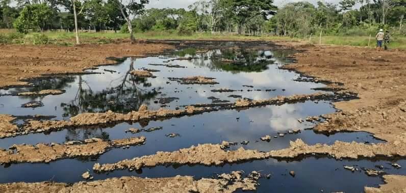 Vuelve y juega. Nueva acción terrorista contra el oleoducto Caño Limón- Coveñas. Este año ya se han registrado 19 atentados