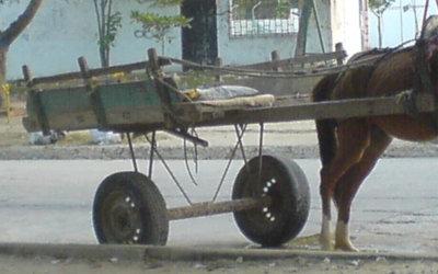 Este año no le cumplirían a carromuleros en sustitución de vehículos de tracción animal. Los recursos están, pero el tiempo se acabó.