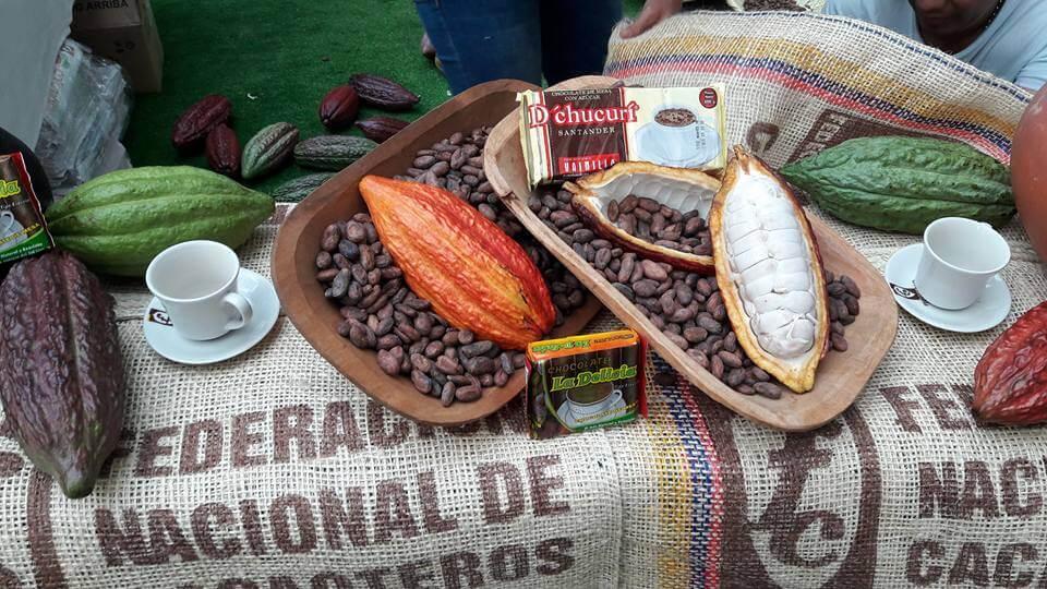 A Malasia y España será exportado en los próximos días el cacao araucano