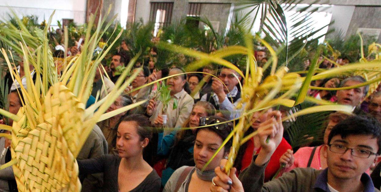 """Corporinoquia lidera la campaña """"En semana santa bendice una planta"""""""