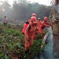 Incendio de grandes proporciones consume reserva forestal en la vereda la Osa de Arauquita