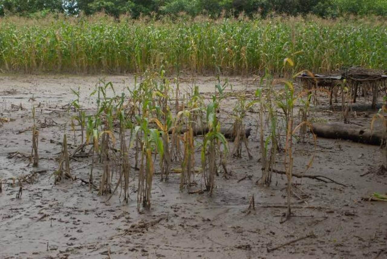 En Filipinas y Laureles están preocupados por las inundaciones Vías y cultivos ya han sido afectados.