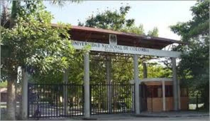 """Estudiantes admitidos en la Universidad Nacional sede Orinoquía podrán beneficiarse del programa """"Jóvenes en Acción"""". Recibirán incentivos."""
