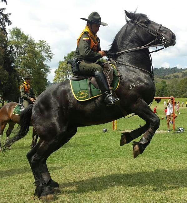 La Policía Nacional aumentó su pie de fuerza en Arauca.