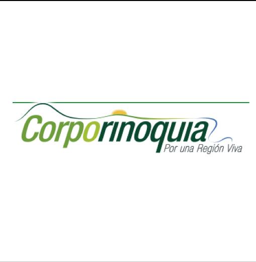Corporinoquia otorgo los permisos ambientales para reconstrucción del puente sobre la quebrada la Pava de Saravena.