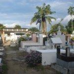 Cada vez más ciudadanos se quejan por desorden en el cementerio.
