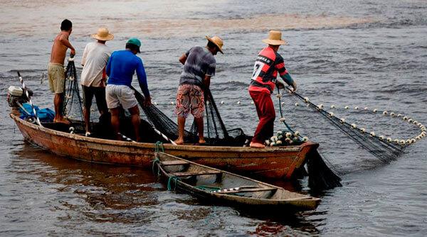 """Pescadores del Departamento podrán obtener recursos del programa  """"Coseche y Venda a la Fija"""" del Ministerio de Agricultura."""