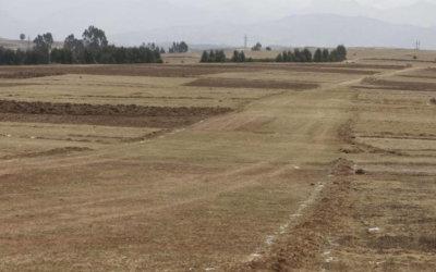 Ya hay un terreno de 10 hectáreas para construir una nueva cárcel. Queda  vía a Caño Limón. Número de internos en aumento.