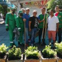 La empresa de aseo de Arauca EMAAR apoya a comerciante del parque caldas en la siembra de Durantas.