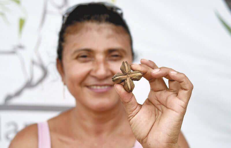 En la zona de reincorporación de Filipinas hay cien mujeres ex combatientes de las FARC. Ex guerrilleras lideran proyectos productivos.