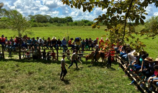 Festival infantil de la Faena Llanera del colegio Agropecuario. Ya llegan a la versión 12. Termina hoy en horas de la mañana.