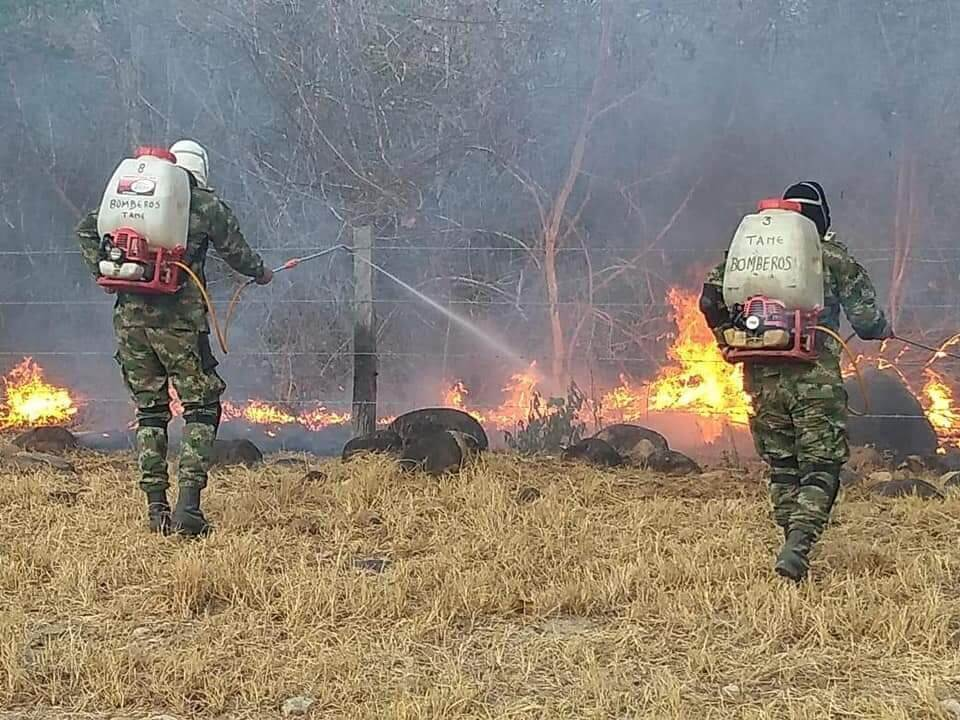 Especies calcinadas y cinco mil hectáreas devoradas por el fuego es el saldo que deja incendio forestal en el Municipio de Tame.
