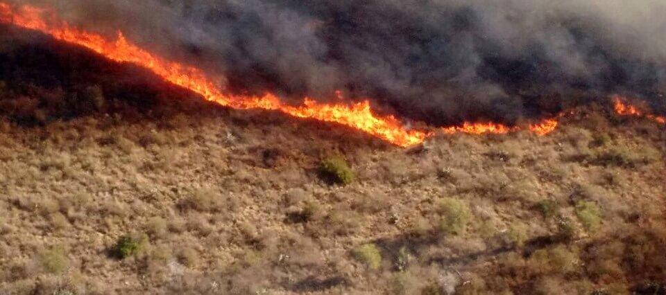 Incendio acabó cultivos de comunidad indígena de Corocito. Los bomberos no acudieron en su ayuda y lo perdieron casi todo.