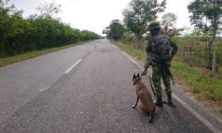 Se confirman casos positivos en la brigada del Ejército en Arauca