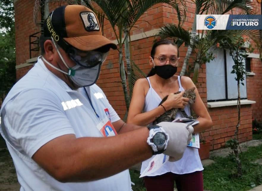 DURANTE LA PANDEMIA SE HAN VACUNADO 15.000 MASCOTAS EN EL DEPARTAMENTO
