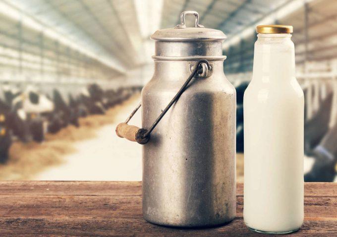 Estudio de la Universidad Nacional calificó como excelente la leche que se produce en Arauca