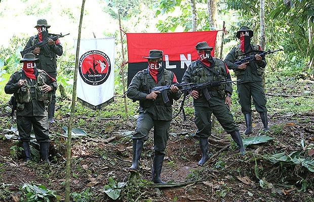 Guerrilla del ELN señaló que en Arauca se está cultivando coca, las autoridades aún no se pronuncian sobre los cultivos.